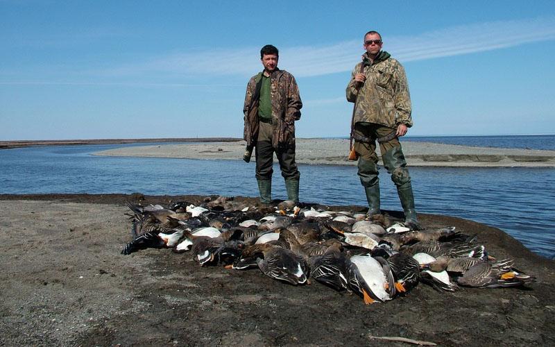 Охота на гуся туры